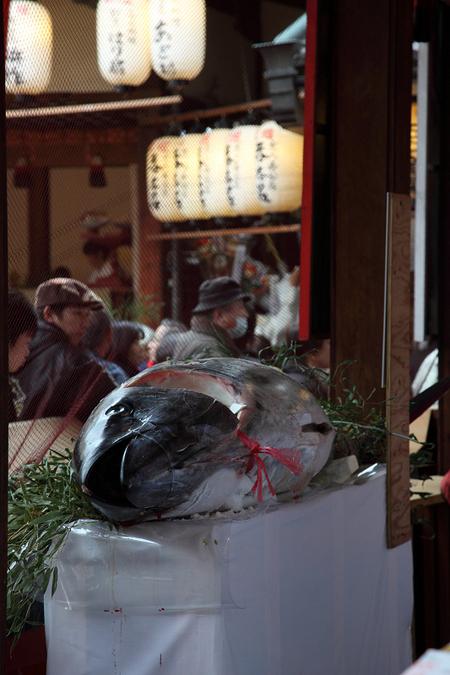 Kyotoebisu1001116