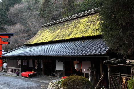 Toriimoto1001296