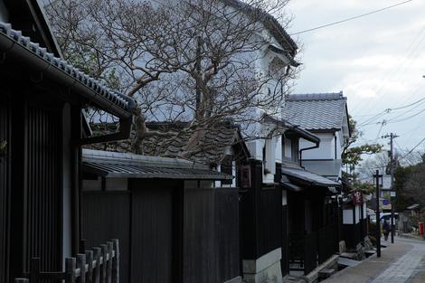 Toriimoto1001298