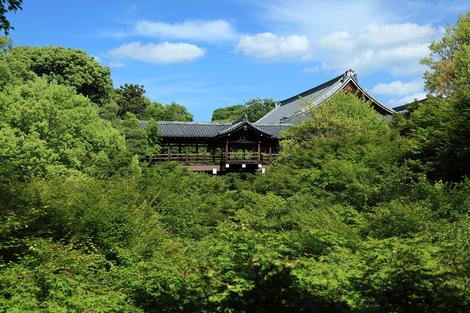 Toufukuji1006035