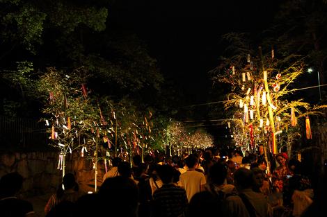 Tanabata1008165