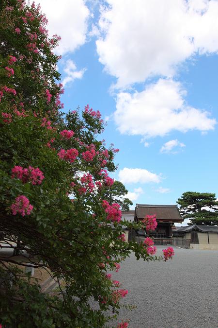 Kyotogyoen1008315