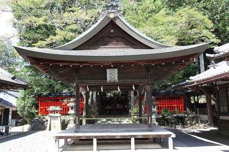 Miyake1009093