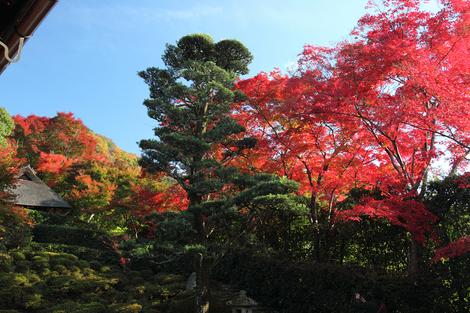 Konpukuji1011191