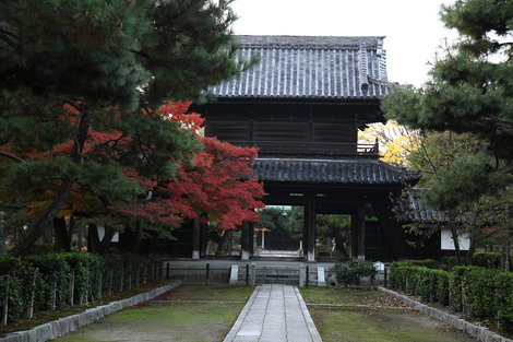 Kenninji1101302