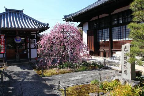 Yuusyouji1103102