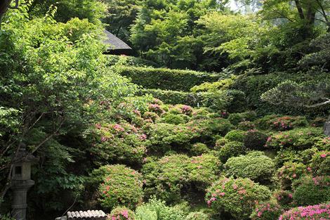 Konoukuji1106055