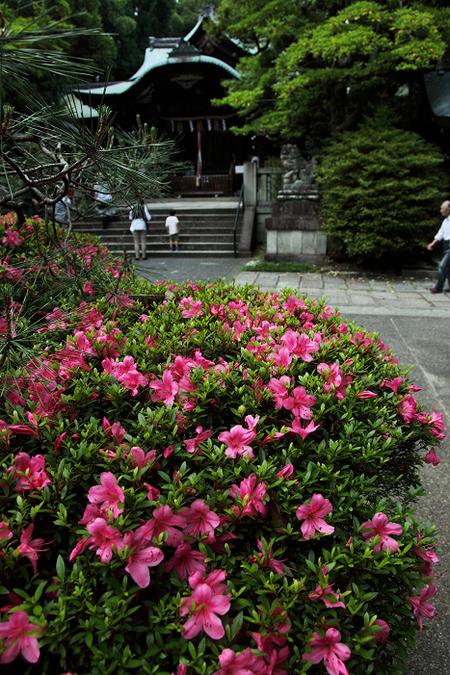 Okazakijijnjya1106111