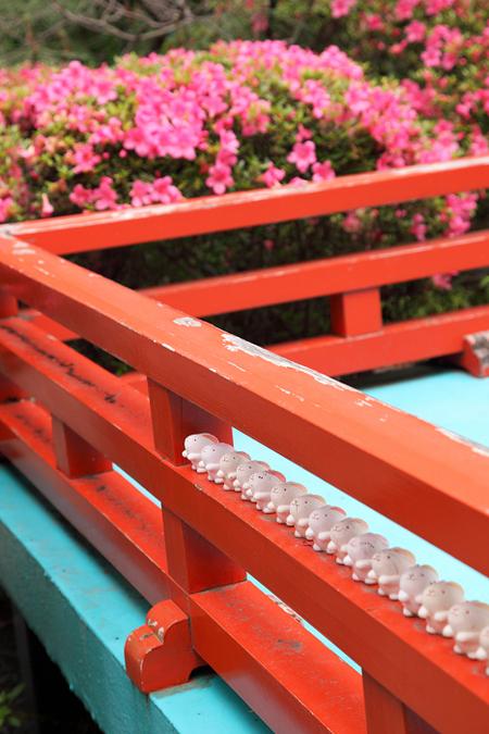 Okazakijijnjya1106113
