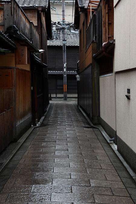Gion1106162