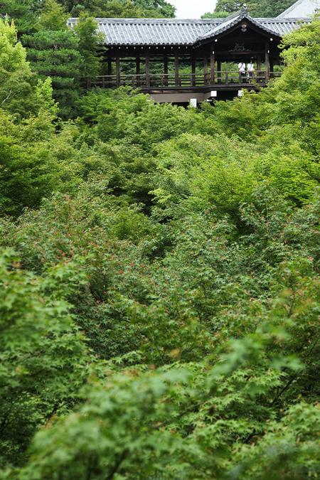 Toufukuji1107061