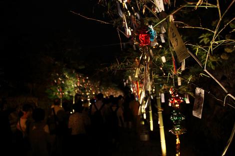 Tanabata1107307