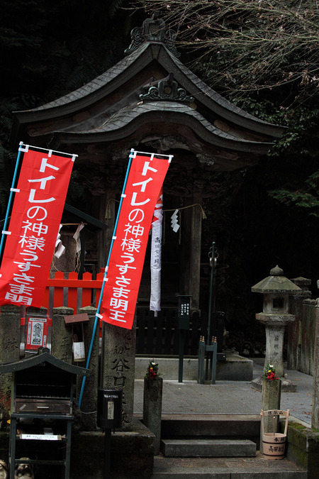 Tanukidani1101187