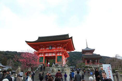 Kiyomizu1203302