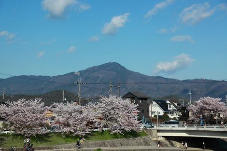 Kamogawa1204186
