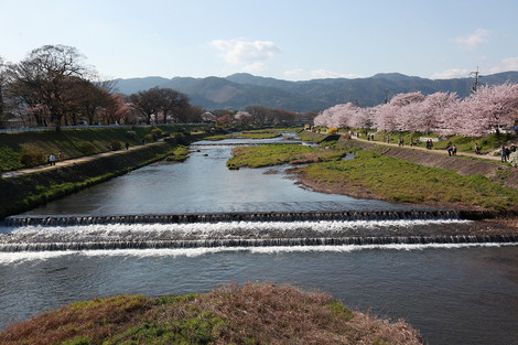 Kamogawa1204188