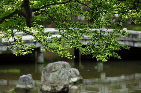 Maruyamakouen1205115