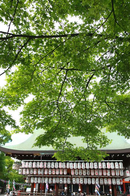 Yasakajinjya1205051