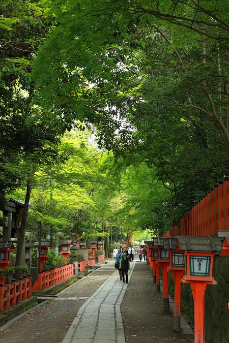 Yasakajinjya1205057