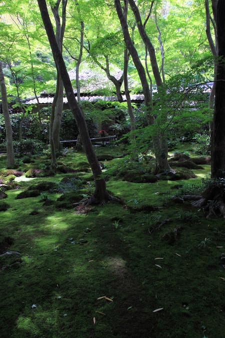 Giouji1205235