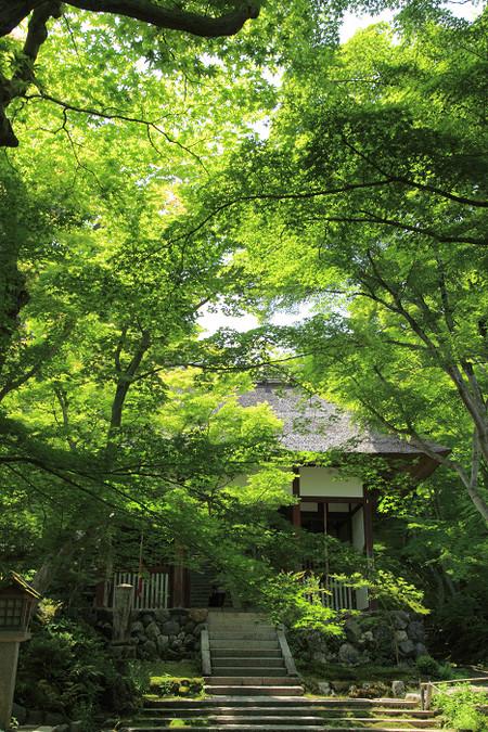Jyoujyakkouji1205221