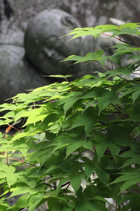 Enkouji1205306