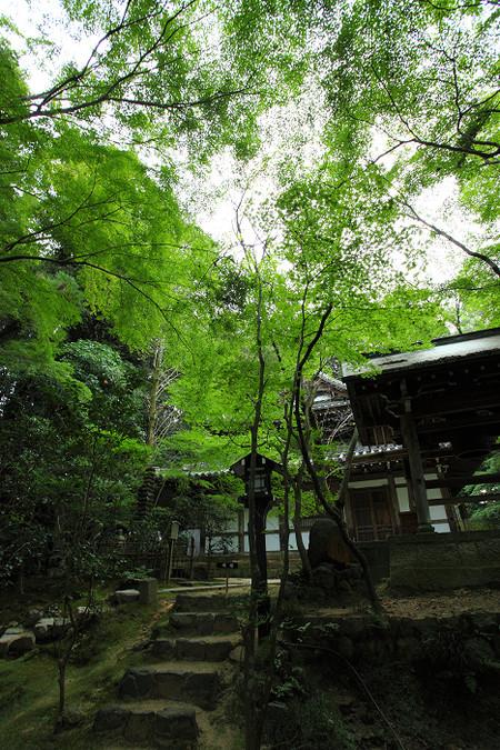 Tyorakuji12205