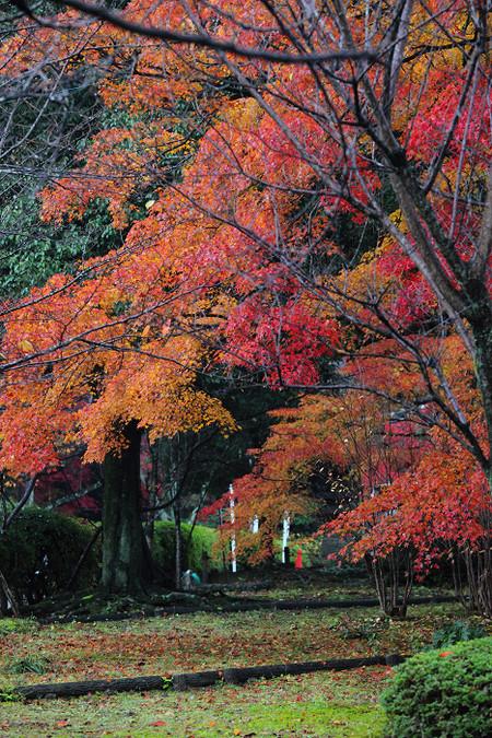 Kousyouji1212112
