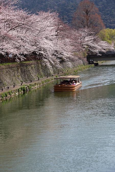 Ohazaki1304022
