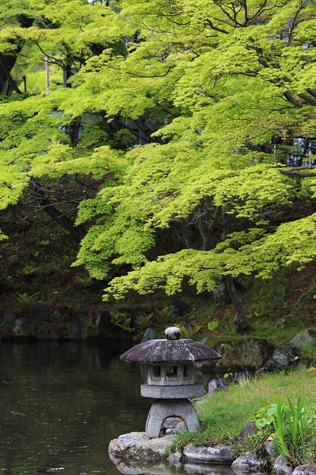 Maruyamakouen1304282