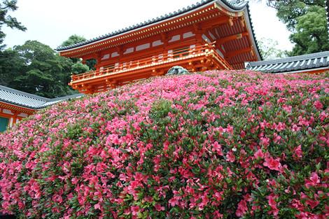 Yasakajinjya1306083