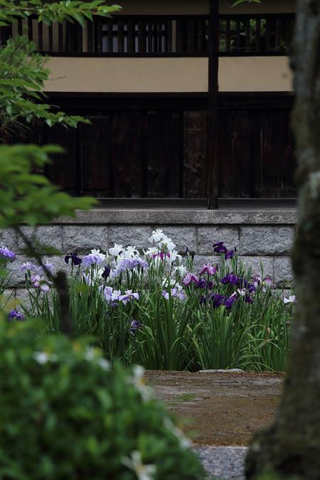 Hekiunsou1306193