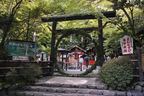 Takebayasi1306286