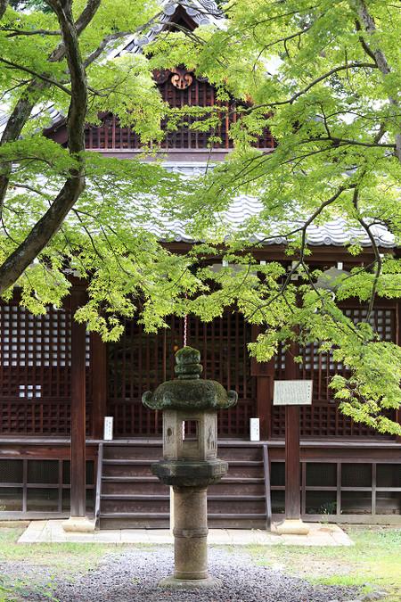 Sinyodou1309021