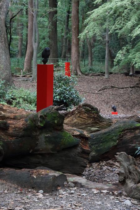 Tadasunomori1310277