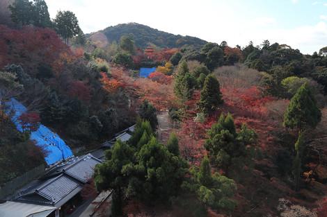 Kiyomizudera1312082