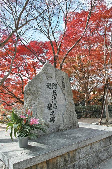 Kiyomizudera1312087