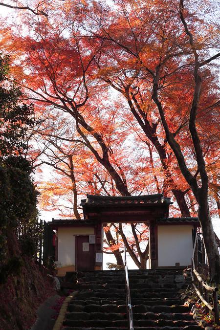 Seikanji1312101