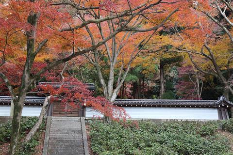 Seikanji1312108