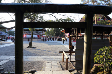 Yasakajinjya1401137