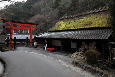 Toriimoto1401237