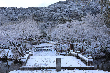 Maruyamakouen1401212