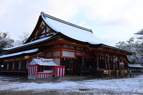 Yasakajinjya1401205