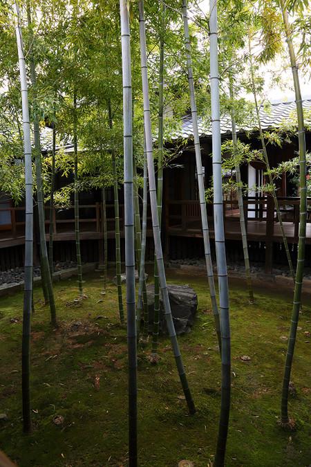 Myoukenji1402065