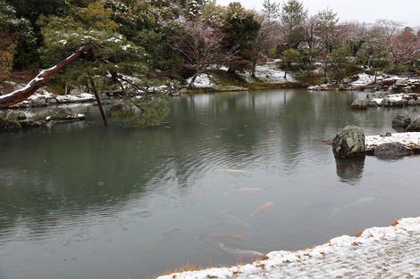 Tenryuji14020183