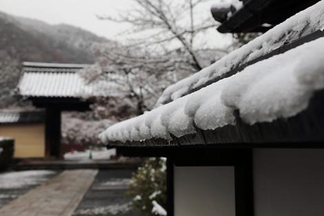 Tenryuji14020186