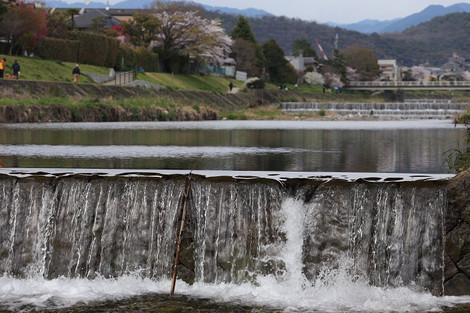 Takanogawa1414126