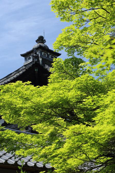 Toufukuji1405102