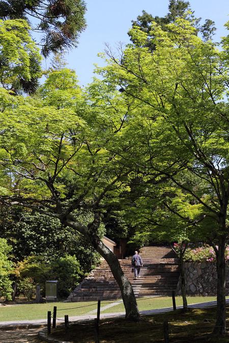 Toufukuji1405103