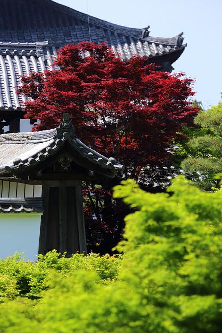 Toufukuji1405107
